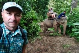 mauro_guida_elefante_giungla